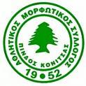 Πίνδος Κόνιτσας - Πωγωνάτος   1-1