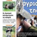 """Κυνηγετικά Νέα - Η άγρια """"συμμορία"""" της Πίνδου"""