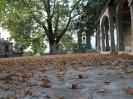 Φθινόπωρο στο Μοναστήρι Κόνιτσας